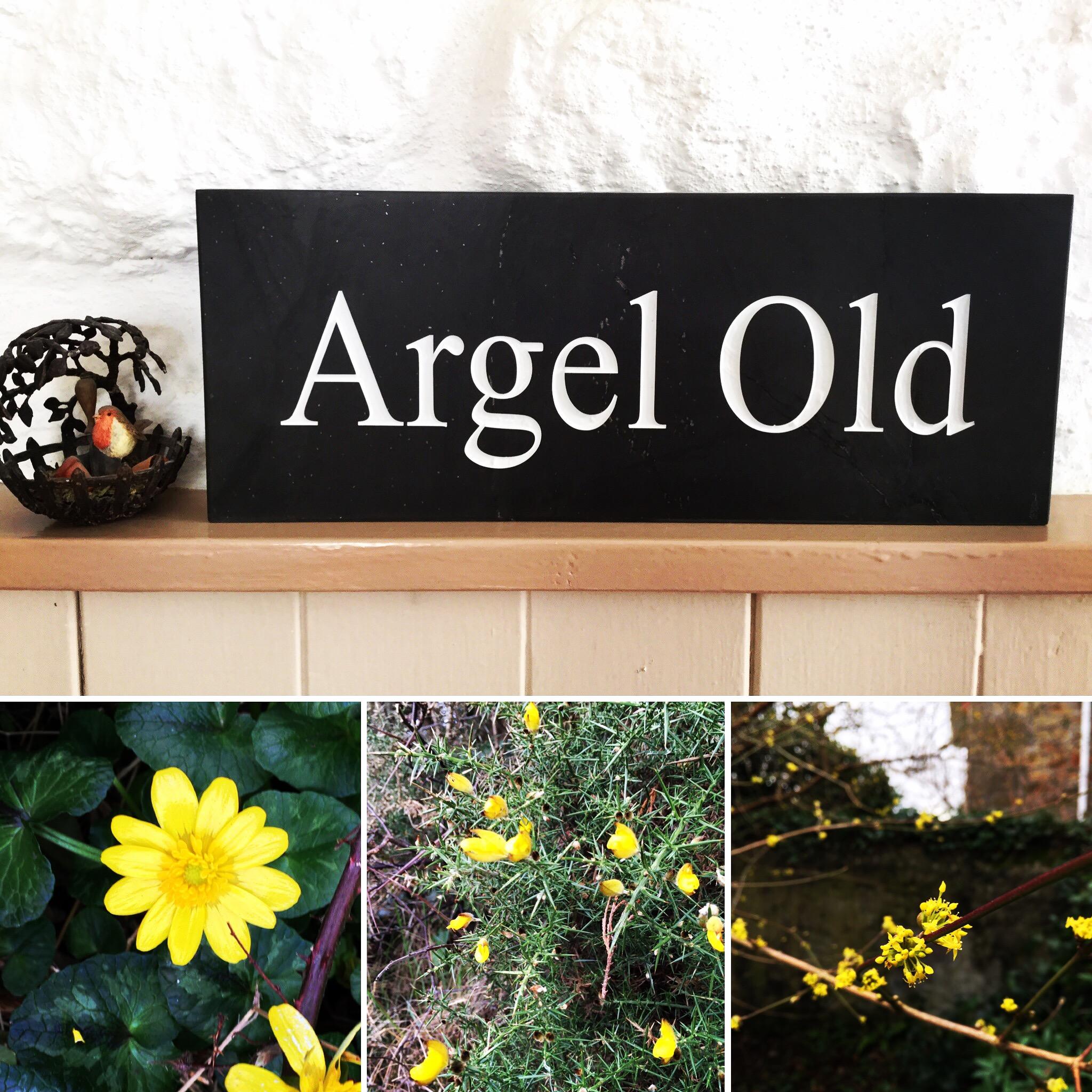 angel old cornish slate house sign